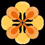 TSS-symbol