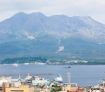 The volcanic ashes from Sakurajima creates rich fertile soils for sweet potatoes