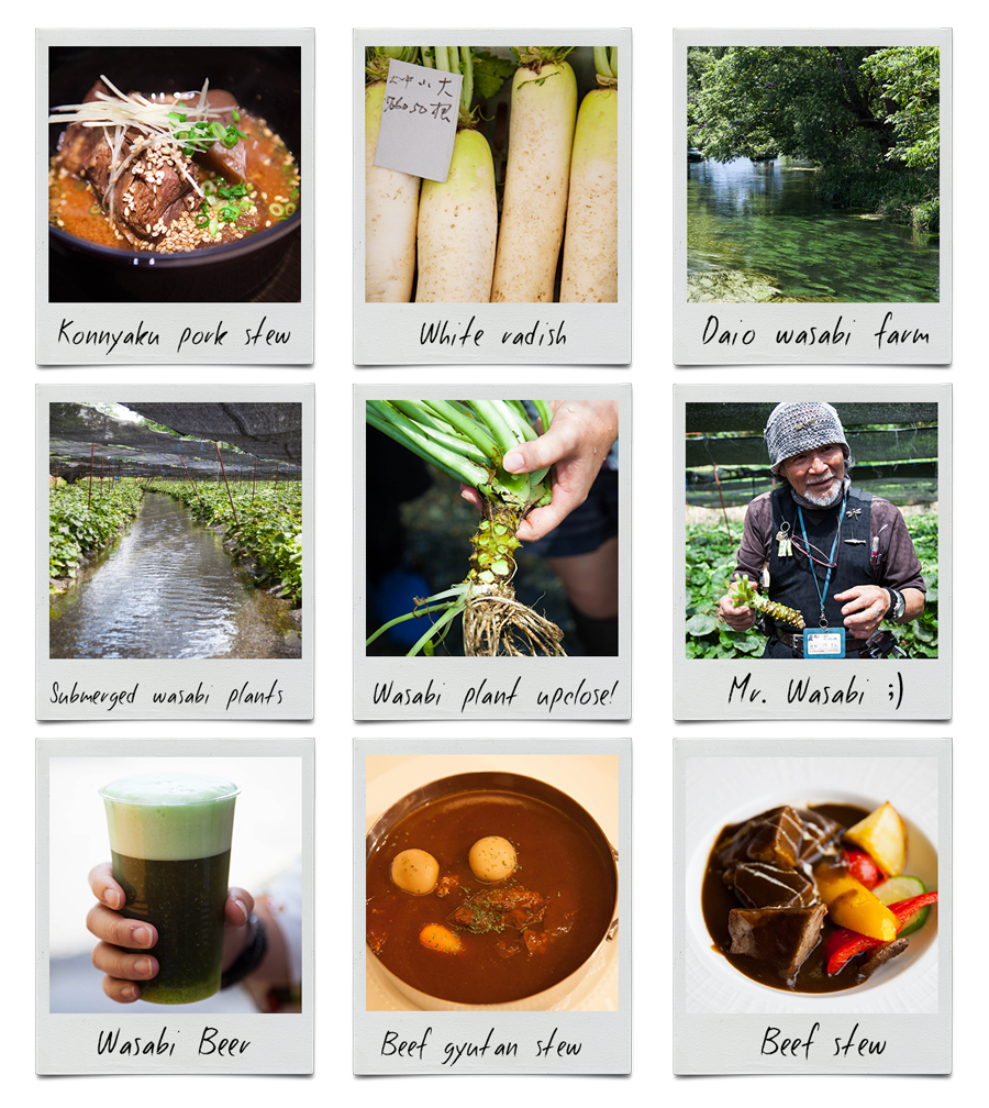 Inspiration mood board for Nikujaga Beef stew with wasabi