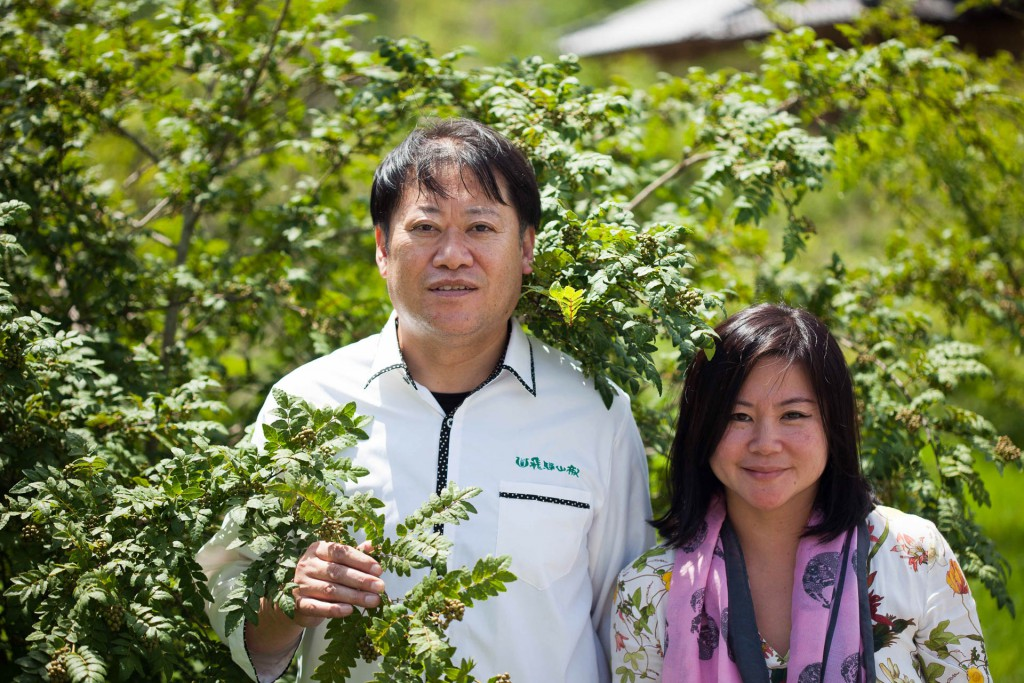 Kazuhiko san brought us out to his farm to show us how the Sansho trees and the berries looked like.