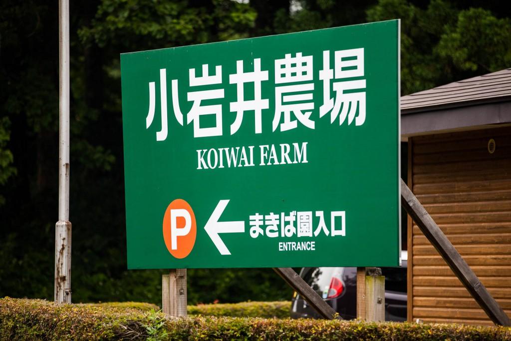 Koiwai farm