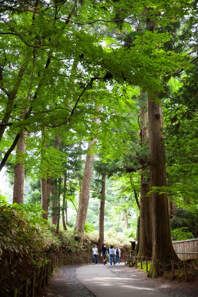 Path to the Chusonji temple