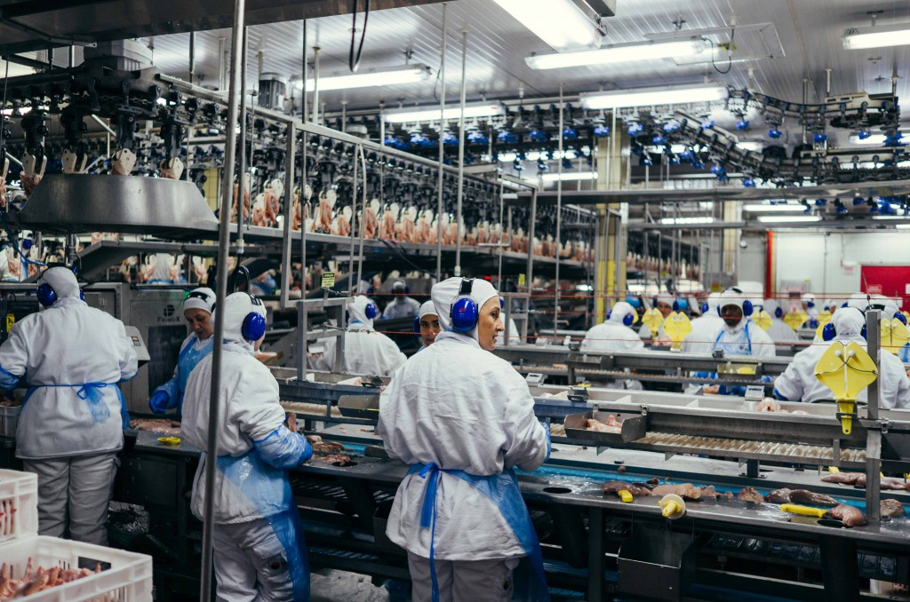 A rare peek at the state-of-the-art factory facilities of BRF.